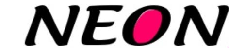 Lacets Neon